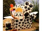 "This Paw Print"" Plaster Dog Print Kit"