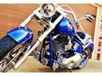 2010 Harley-Davidson Other Nic