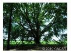 High Springs, FL Alachua Country Land 83.000000 acre