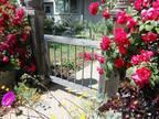 3479 Rose Court Concord, CA