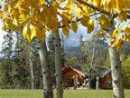 Sledders wanted! entrance ranch cabin rentals