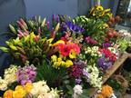 Business For Sale: Florist Business For Sale
