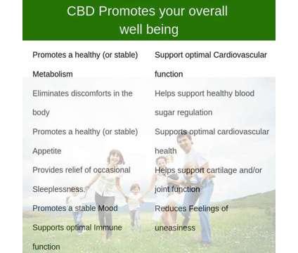 Free Samples-Cbd Oil & Cbd Health & Wellness Products is a free Free Stuff in Brockport NY