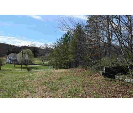 Lt 23 Pine Tree CT Ellijay, Perfect Building Lot for Smaller at Lt 23 Pine Tree Court in Ellijay GA is a Land
