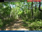 Land Auction in Florida Wakulla County