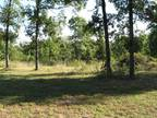 340 ACRES Approx. Timber, Meadows, Ponds, Roads, Wildlife, Privacy