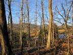 328555-8.34 Acre Wooded Home Site - spring fed pond front - mt. views