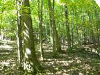 63 Acres -- Marketable Timber -- No Gas Lease & Mineral Rights Convey