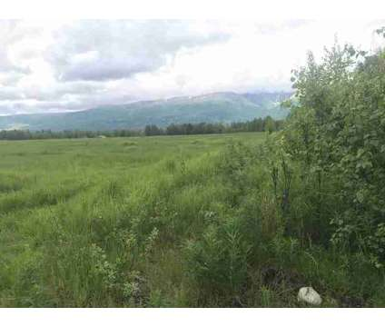 5769 N PC Road Wasilla, This 5 acre parcel sits on level at 5769 N Pc Rd in Wasilla AK is a Real Estate and Homes