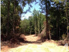 Troy, AL Pike Country Land 10.040000 acre
