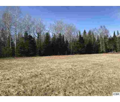 Upper Hanson Lake Rd Balsam Township, 70 acres of good land at Upper Hanson Lake Road in Bovey MN is a Land