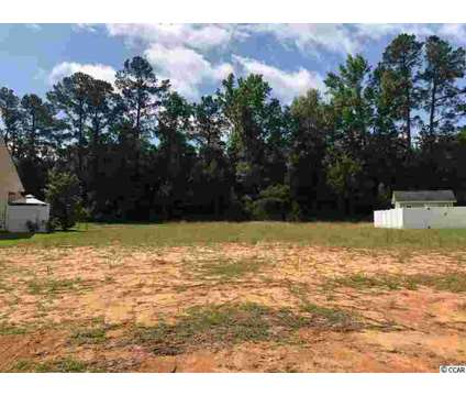 169 Barons Bluff Dr. Conway, Excellent value for this Barons at 169 Barons Bluff Drive in Conway SC is a Real Estate and Homes