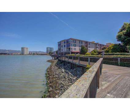 Beautiful Remodeled 1B1B in Emeryville Watergate Community – convenient to SF at 1 Bedroom At Commodore Dr in Emeryville CA is a Apartment