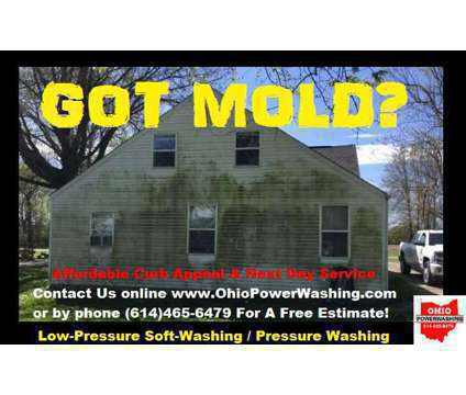 Low-Pressure Soap House Wash is a Exterior Home Cleaning service in Dublin OH