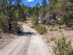 Oregon land 2.1 Acres Secluded, Woods,