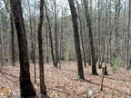 Land For Sale In Toccoa, Ga