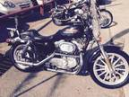 2000 Harley Davidson Sportster 883 For Sale
