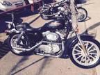 2000 Harley Davidson Sportster 883 For Sale