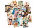 25 Pin Up Girls Stickers Pack Lot nicey Women Vintage Laptop