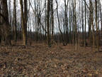 Plot For Sale In Battle Creek, Michigan