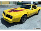1980 Pontiac Trans Am Mint Condition