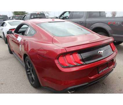 New 2020 Ford Mustang Fastback is a Red 2020 Ford Mustang Car for Sale in San Antonio TX
