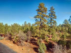 Plot For Sale In Show Low, Arizona