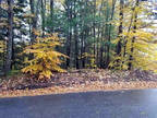 Plot For Sale In Gilford, New Hampshire