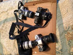 Old Cameras used