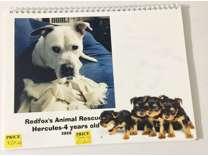 2020 animal rescue calendar