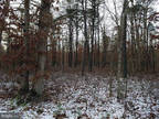 Plot For Sale In Vineland, New Jersey