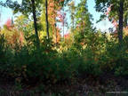 Plot For Sale In Augusta, Maine