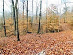 Plot For Sale In Martinsville, Indiana