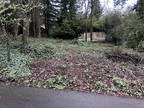 Portland, Two tax lot parcels for 2 potential residential