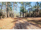 Pineville 3 BR 2 BA, 4.8 acres of wooded paradise flanked by