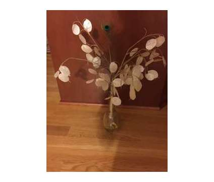 Silver Dollar/Money Plant Arrangement is a Everything Else for Sale in Wescosville PA