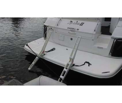 Trick Davit Systems is a Boat in Punta Gorda FL