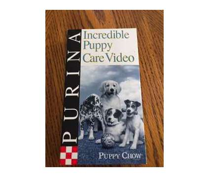 Incredible Puppy Care Video is a Puppy For Sale in Wescosville PA