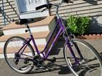 Liv Flourish FS 1 Womens bike