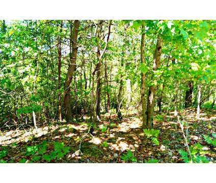 119. S. Laceola Rd, Cleveland, Ga 30528. 2.44 Acres at 119. S. Laceola Rd, Cleveland, Ga 30528. in Atlanta GA is a Land