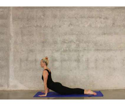 Top 200 hour Yoga Teacher Training in Rishikesh from RYG 2021 is a Exercise & Fitness Services service in Uttar Kashi UP