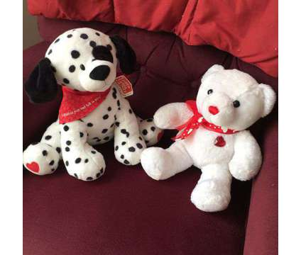 Dalmation Dog & Teddy Bear is a Everything Else for Sale in Wescosville PA