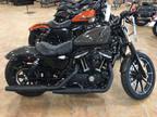 2019 Harley-Davidson XL883N