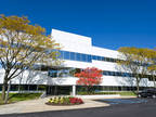 Rye, Access a bright and inspiring office space designed to