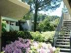 Vanguard Apartments - Charming 2 Bed/1 Bath in Moraga READY NOW! First Month...
