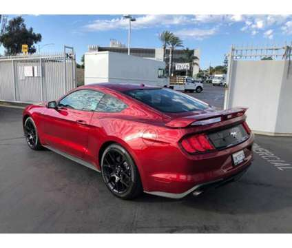 Used 2019 Ford Mustang Fastback is a Red 2019 Ford Mustang Car for Sale in Hawthorne CA