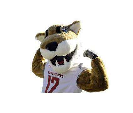 """WSU vs. Stanford """"Family Day Tickets"""" Oct. 16 is a ncaaf_sss, ncaaf_wwc Football Ticket on Oct 16 in Pullman WA"""