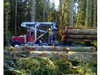 AMERICAN FOREST LANDS Washington Logging Company, Tree Loggers