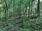 Plot For Sale In Athens, Ohio