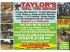 Dangerous Tree Removal-Land Clearing-Tree Trimming
